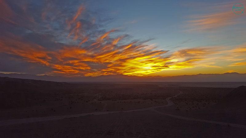apus-desert-iran