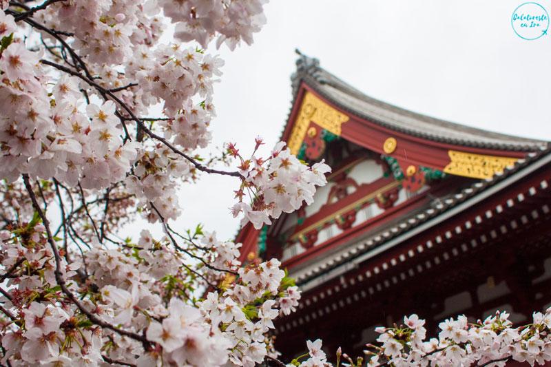 Templu Tokyo