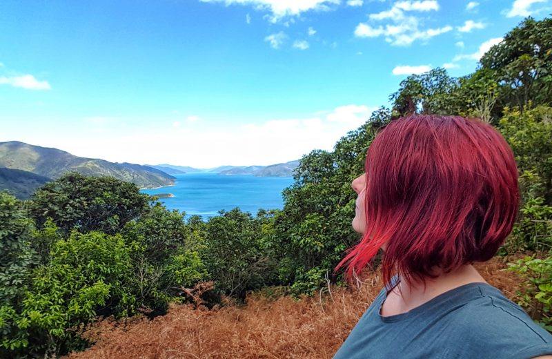 Noua Zeelanda